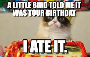 Cat Birthday Memes - a little bird told me it was your birthday on memegen