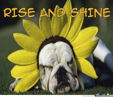 Good Morning Sunshine Meme - good morning sunshine by salaminizer meme center