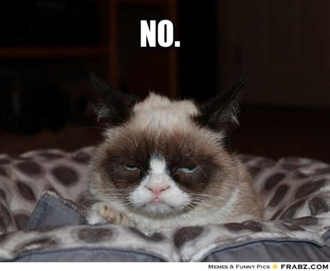 Meme How About No - grumpy cat memes generator image memes at relatably com