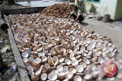 Minyak Kelapa Kopra pabrik minyak goreng banyak tung buah kelapa antara