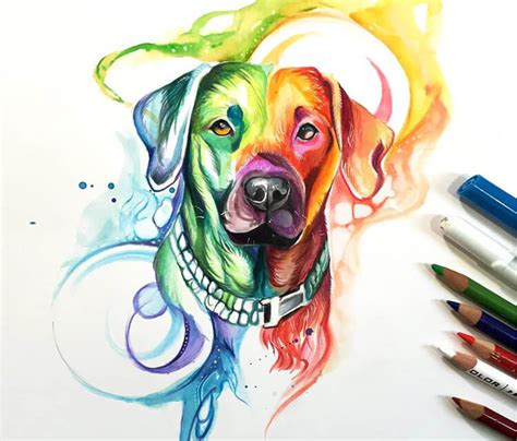 rainbow dog color drawing by katy lipscomb art no 2763