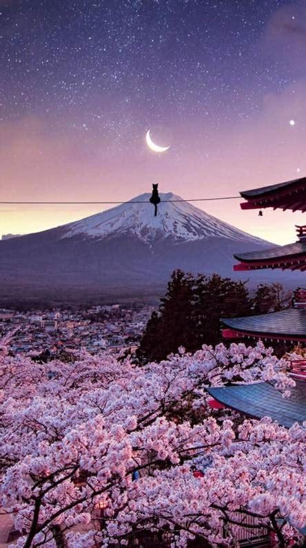 japanese wallpapers   zedge