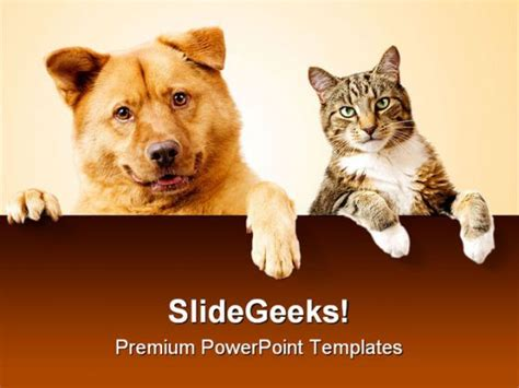 Dog Cat Friends Animals Powerpoint Backgrounds And Free Animal Powerpoint Templates