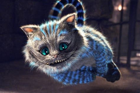 cheshire cat cheshire cat on in cheshire
