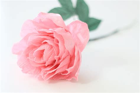 paper flower peony tutorial crepe paper peony ash and crafts