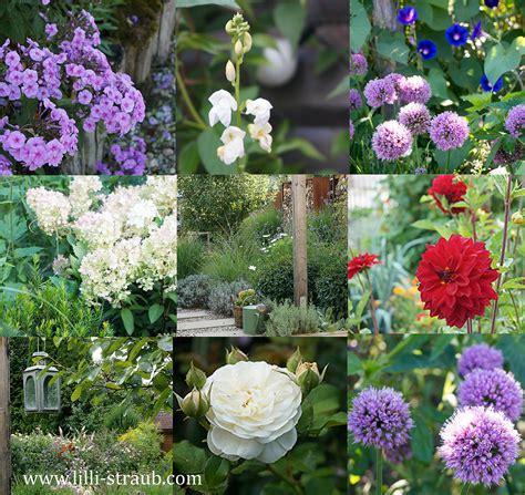 mein garten mein garten im august lilli straub den traumgarten planen