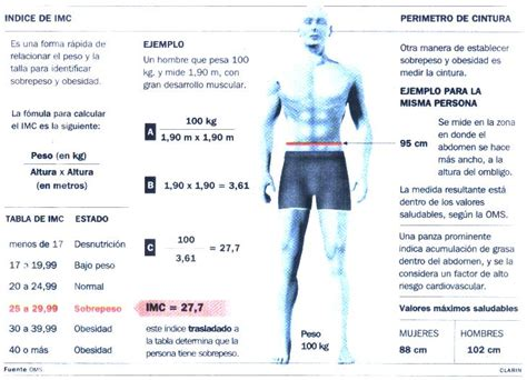 indice de masa corporal imc co kr images frompo 1