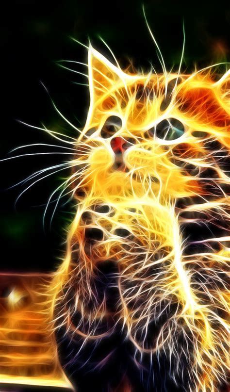 abstract  wallpaper  cat  fire