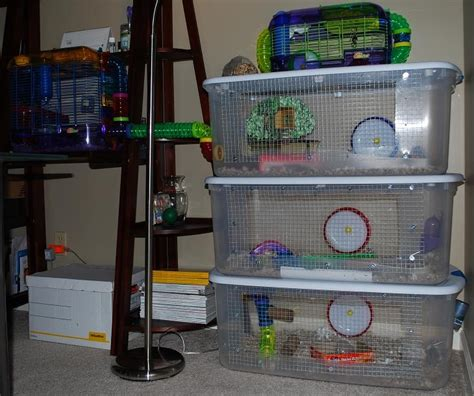 diy bin hamster cage clever use of plastic bins to make a hamster cage also includes a quot how to quot section to make your