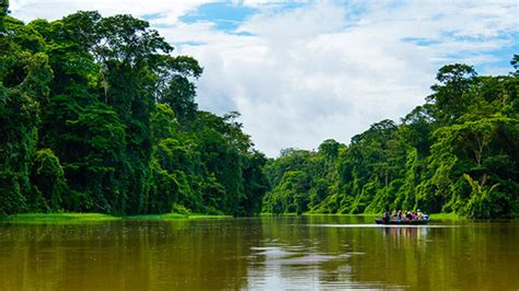 Sand Beaches by Guide To Tortuguero Costa Rica Discover Abudant Wildlife