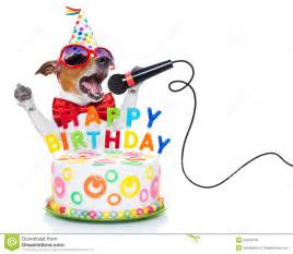 jack russell dog as a surprise singing birthday song like