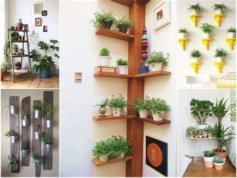 indoor plants ideas 15 amazing ideas to display your indoor plants
