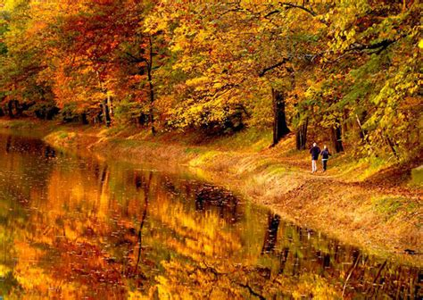 explore philadelphia and the countryside s beautiful fall foliage this weekend