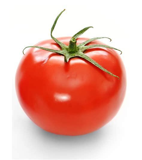 tomato color vermillion tomato colors photo 34537432 fanpop