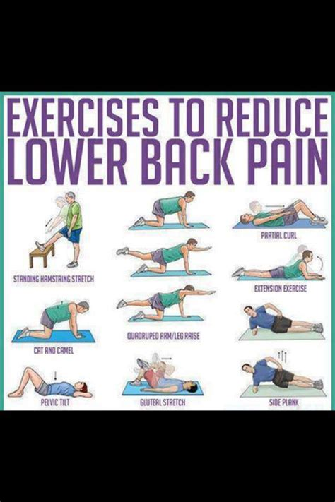 lower back exercises ease your lower back exercises health hair and