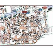 Information For Visitors To CERN
