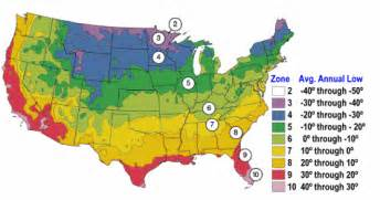 gardening hardiness zones cold hardy orchids