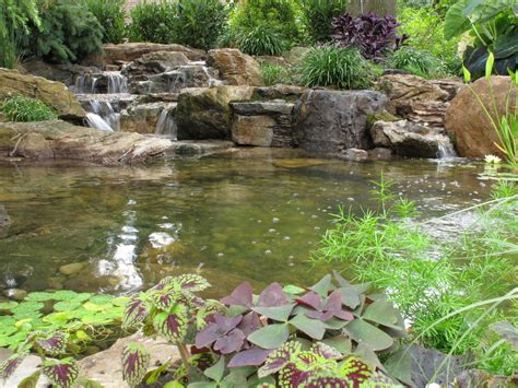 Aquascape Nj by Pond Myth 14 Landscape Ideas Ponds Wall Township Nj