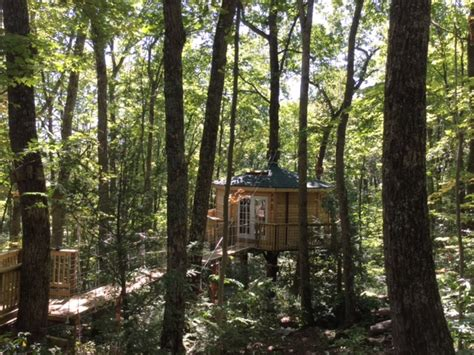Cabins Near New River Gorge by Country Road Cabins Opens New Tree House Lodging Near New