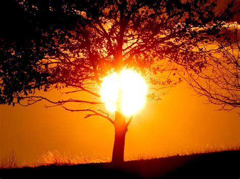 imagenes sol 4k cool hd nature desktop wallpapers tropical sunset wallpaper