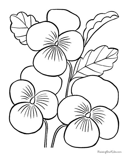 coloring pictures of hawaiian flowers flower page printable coloring sheets hawaiian flower