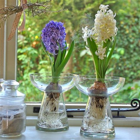 17 best images about glass vases on count