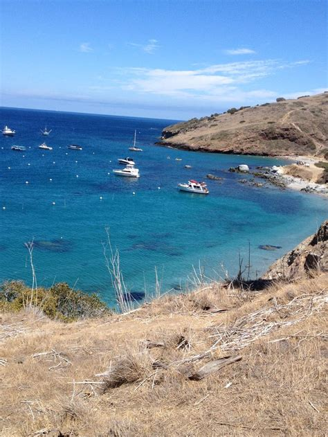 boat to two harbors catalina 36 best images about two harbors on pinterest boat tours