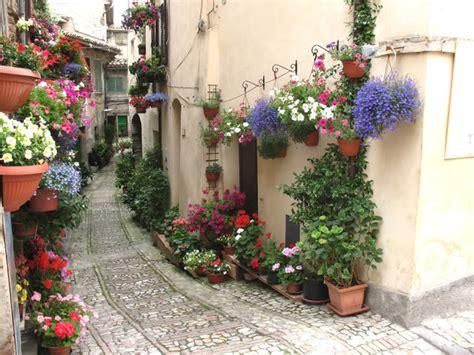 balconi fioriti d inverno tropea al via il concorso finestre balconi e vicoli