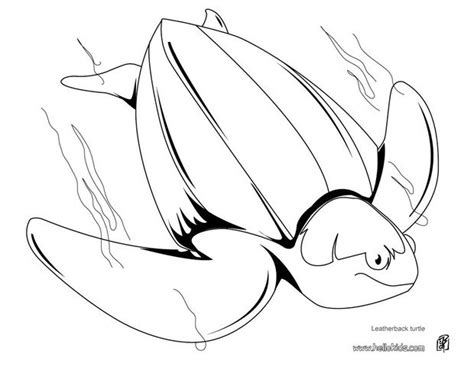 Leatherback Turtle Coloring Page | leatherback turtle coloring pages hellokids com