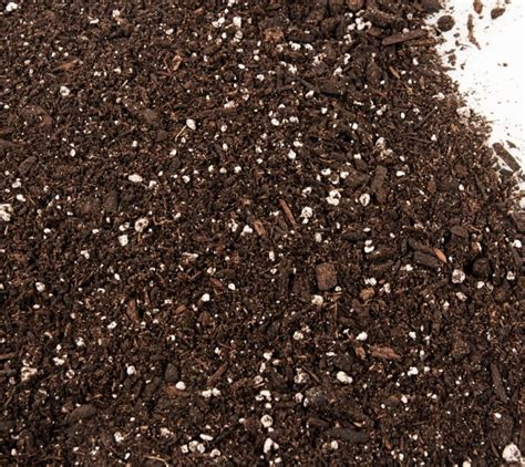 glacier gold potting soil mountain west productsmountain