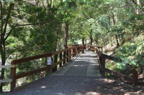 Waterlily Lake Picture Of Wilson Botanic Park Berwick Melbourne Botanical Gardens Parking