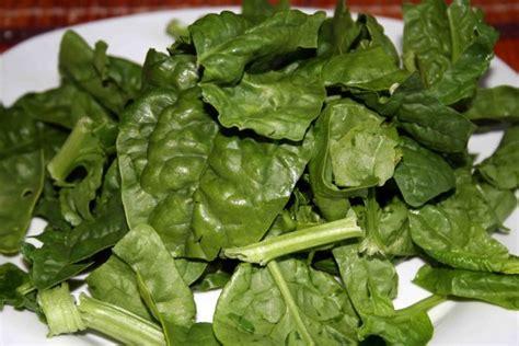 gli alimenti contengono ferro gli alimenti ricchi di ferro biodisponibile o assimilabile