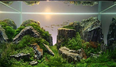 aquascape wallpaper top aquascape wallpapers weneedfun
