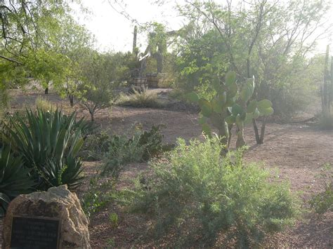 Scottsdale Az Botanical Gardens Scottsdale Botanical Garden Scottsdale Botanical Gardens Scottsdale Arizona Radisson Fort