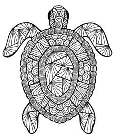 summer coloring pages for adults 12 free printable coloring pages for summer