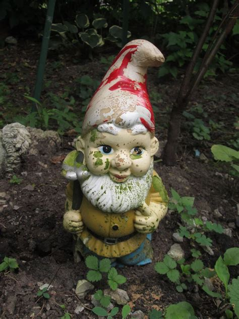 crazy lawn gnomes on pinterest garden gnomes gnomes and garden gnome my photography pinterest