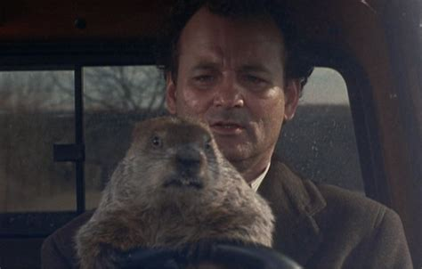 groundhog day reddit 5 things you need to in australian tech today