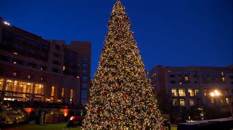 community tree lighting ceremony at jw marriott tucson