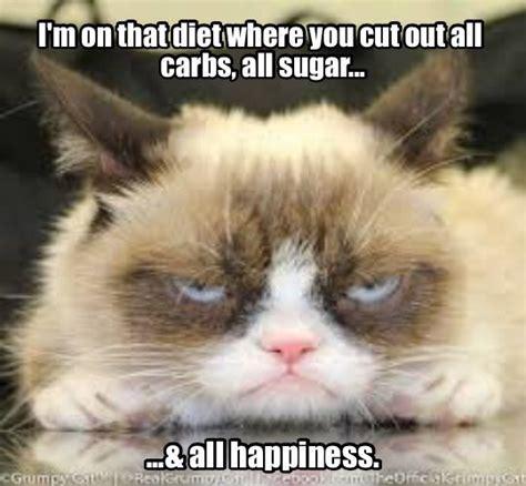 Cat Gym Meme - best 25 diet meme ideas on pinterest funny diet carbs