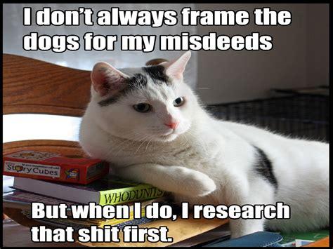 cat meme quote funny humor grumpy sadic wallpapers hd desktop  mobile backgrounds