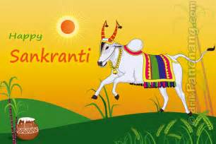 makar sankranti hindu festival about kite flying pictures information images