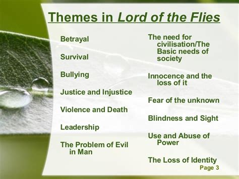 theme of lord of the flies chapter 11 4 simon poem