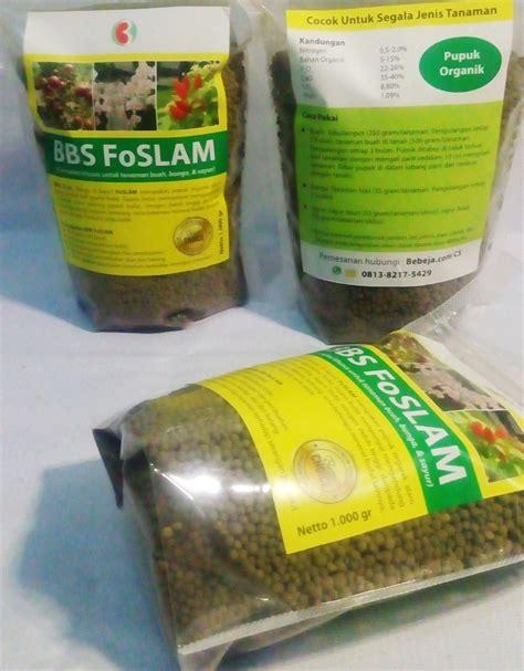 Pupuk Organik Untuk Bunga Aglaonema pakai pupuk organik bbs foslam bebeja