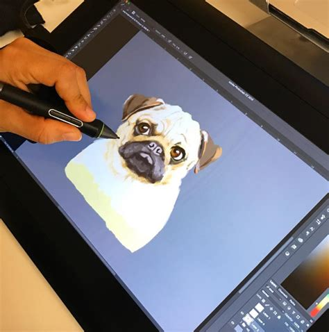pug screen website name pug peachyapricot