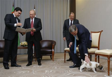 putin puppy turkmenistan president gives putin puppy for birthday the columbian