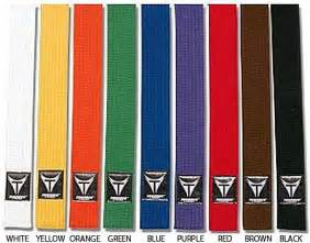 belt colors in karate the story of martial arts hierarchy and ranking ikigai