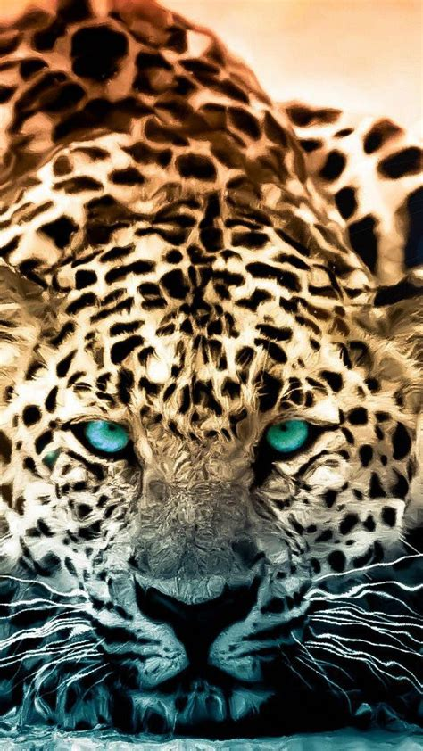 wallpaper iphone 5 leopard tiger iphone wallpaper for iphone 6 plus