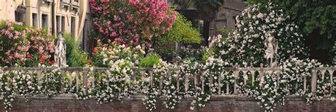 giardini segreti giardini segreti di venezia