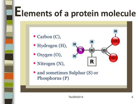 protein elements sec 3 f n proteins part 1 nutrients and health