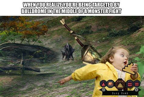 Monster Hunter Memes - that moment monster hunter know your meme